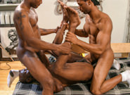 Cock Contractors