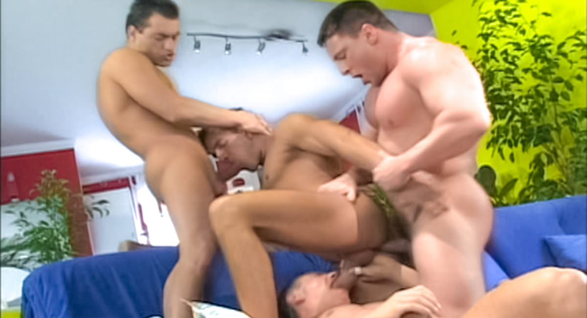 gay muscle tv