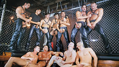 Sting: A Taste For Leather : Chad Kennedy, Nick Riley, Chip Noll, Blake Harper, Dylan Reece, Tony Lazzari, Cameron Fox, Jason Branch, Virgil Sainclair, Fernando Montana