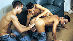 Aim To Please : Vince Ditonno, Billy Kincaid, Nick Young