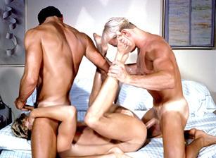 gay xxx blog