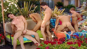 Dripping Wet : Leo St. Phillip, Ashton Star, Cole Ryan, Nicholas Lockwood, Logan Robbins