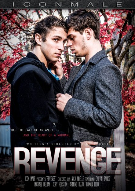 The Revenge Dvd Cover