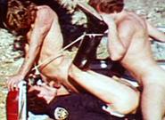 Gay Videos XXX : tittied!