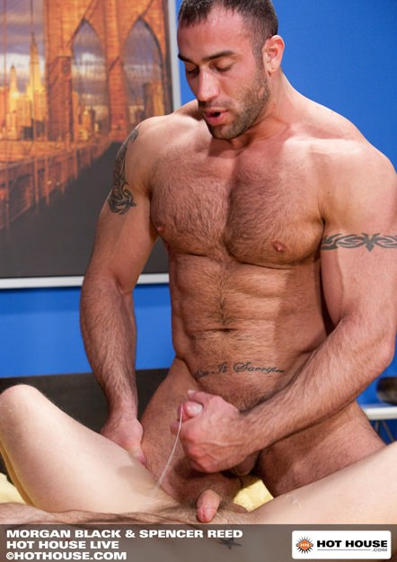 Morgan Black And Spencer Reed Dvd Cover