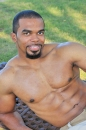 Boxer picture 15
