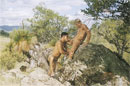 Absolute Arid - Photo Set 01 picture 1